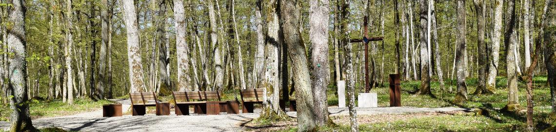 Header Naturfriedhof2